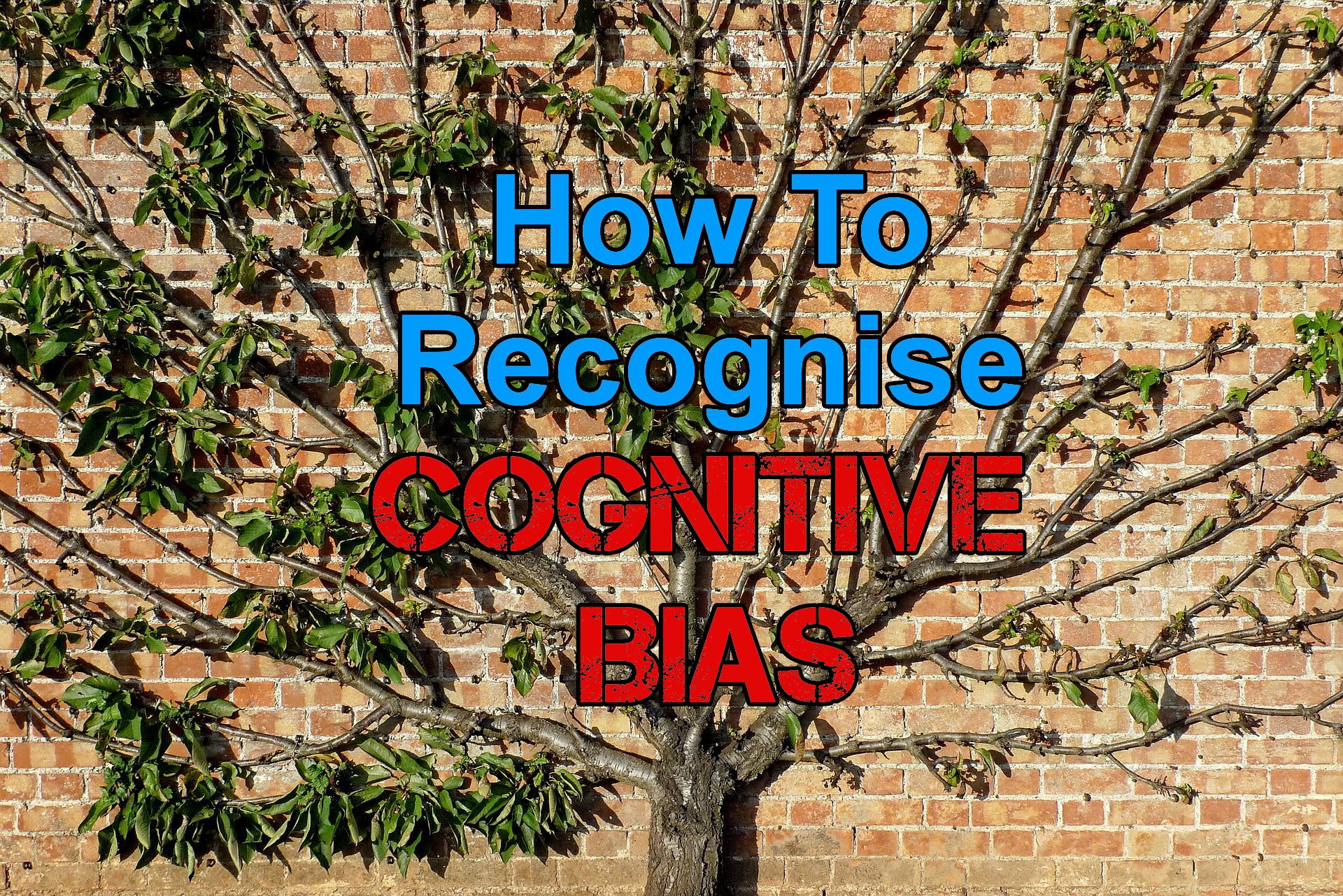 the importance of biases in life Identifying test bias requires that test developers and educators determine why one the question of bias—and how to eliminate it—has grown in importance.